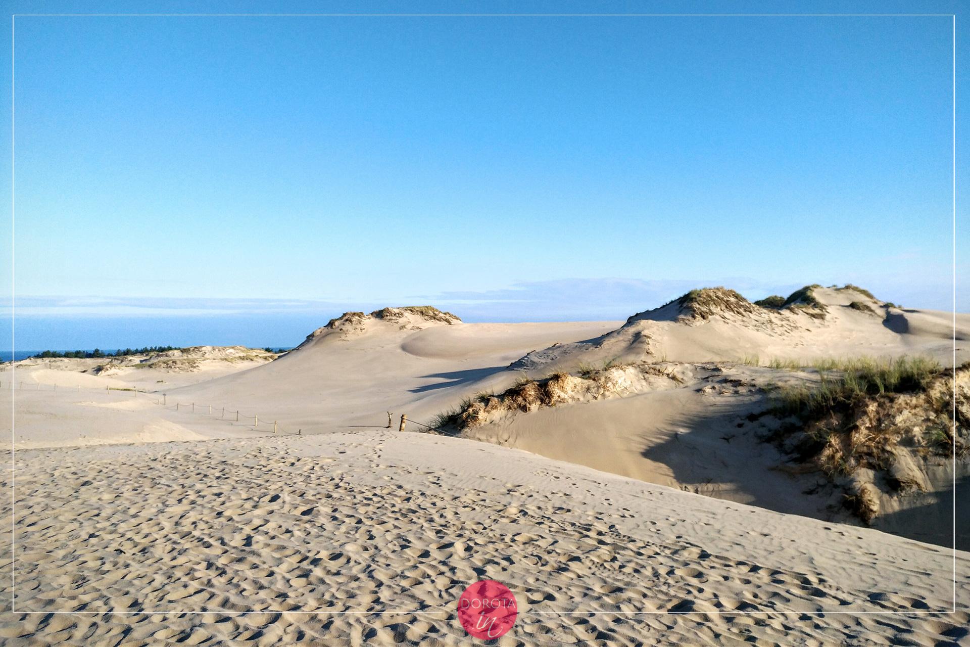 Wydma Łącka - cudowny krajobraz