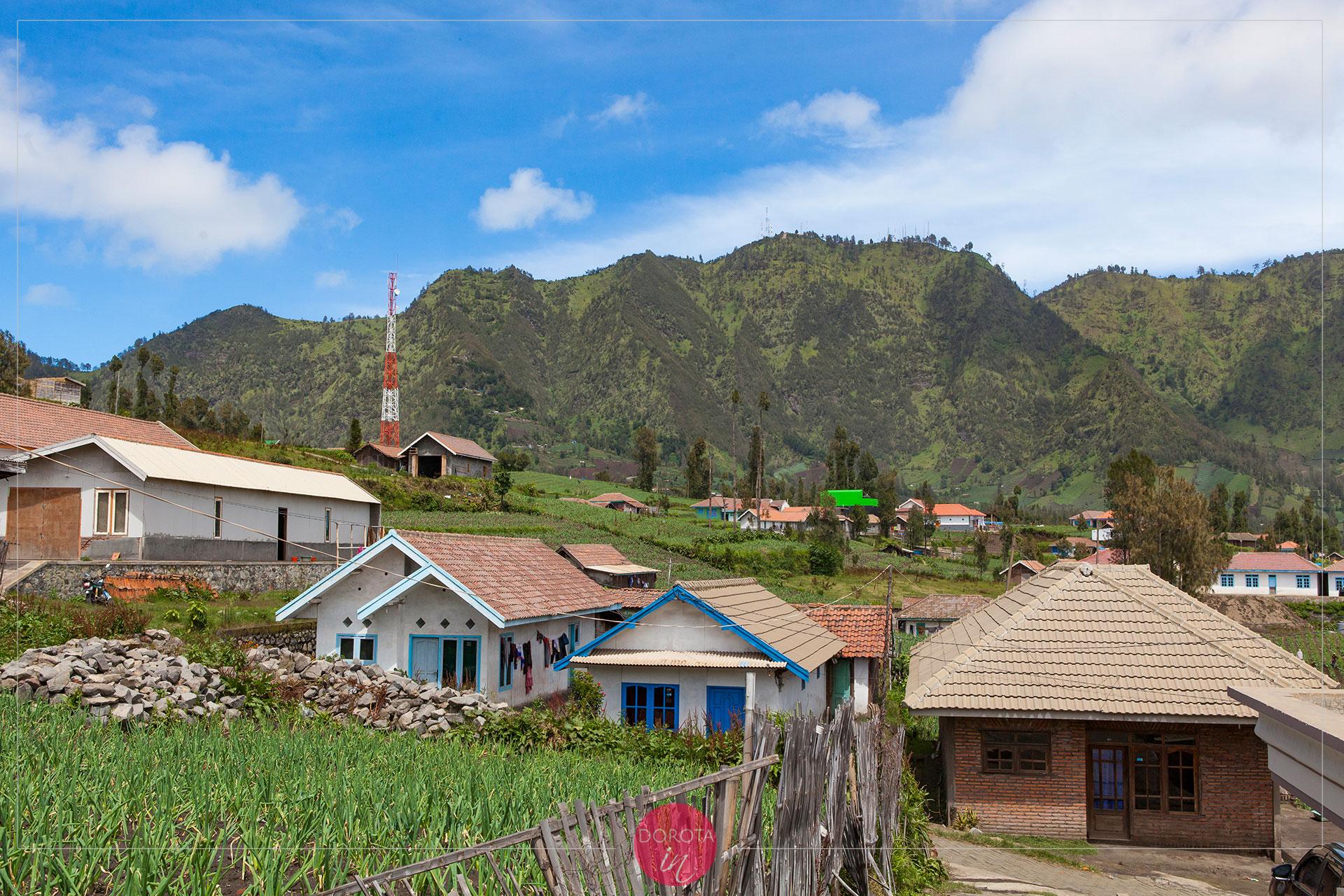 Cemoro Lawang - wioska, ale już dawno dotarła tu cywilizacja