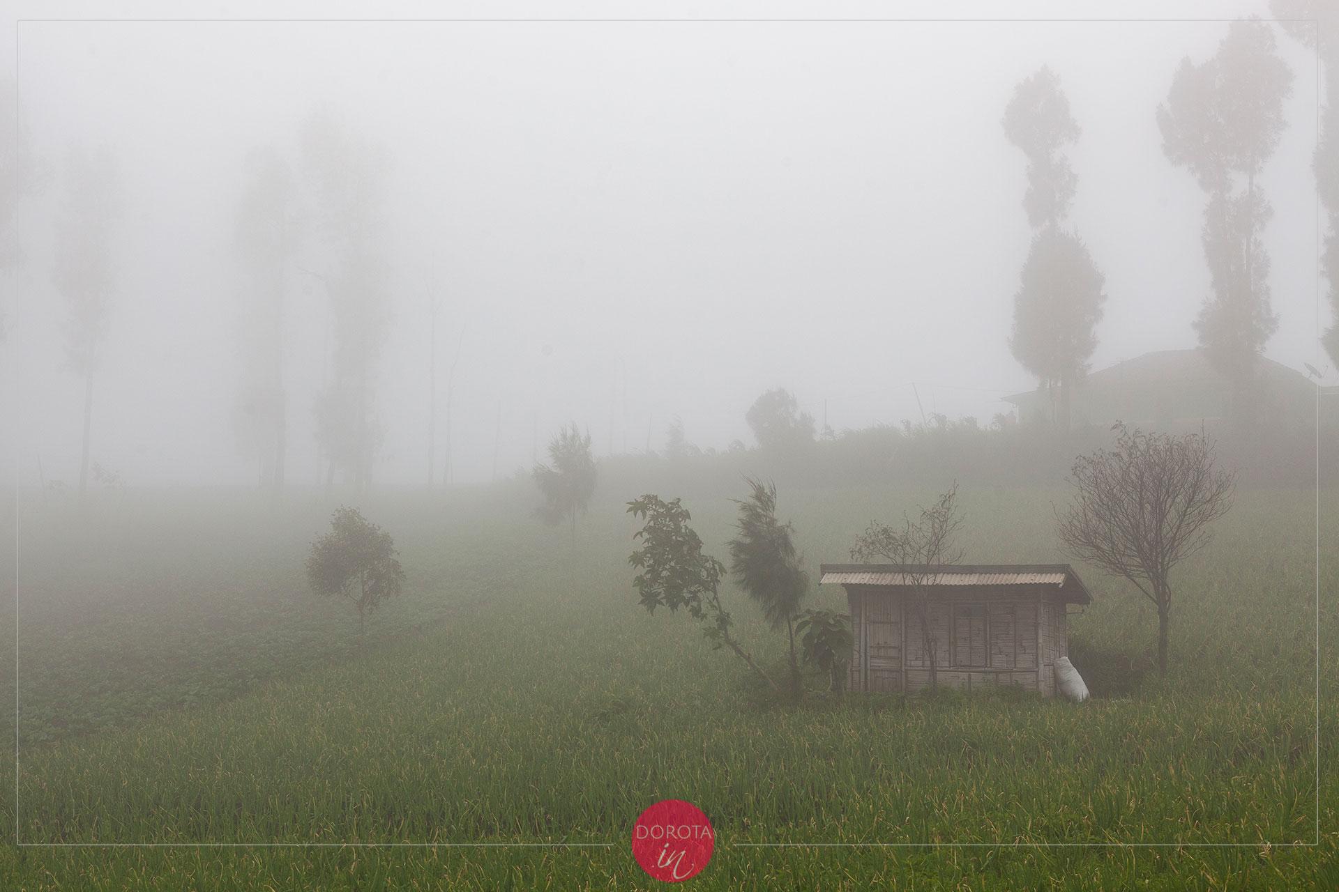 Pochmurna pogoda w Cemoro Lawang
